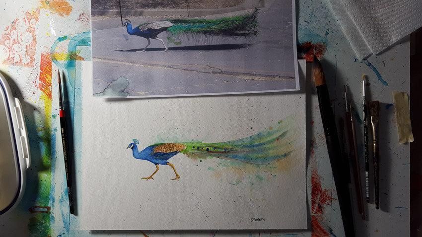 Peacock watercolor painting