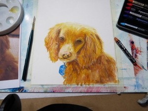 Ziggy Dog Painting and Video