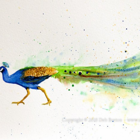 Stubborn Peacock Watercolor Painting