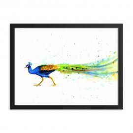 Peacock Art Framed Poster Print