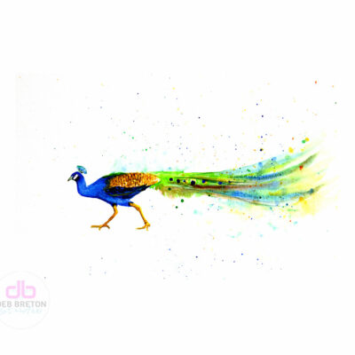 Stubborn Peacock Watercolor Painting