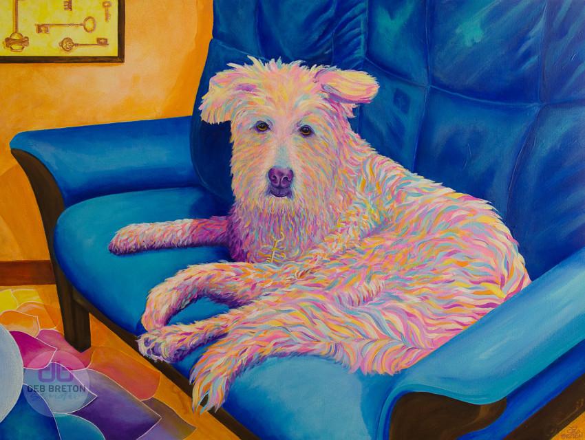 Stella dog portrait